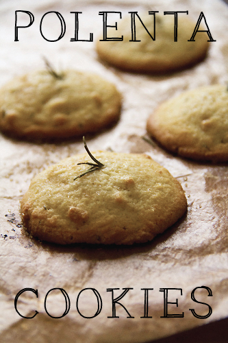 Vegan Orange Rosemary Cookies Recipes — Dishmaps