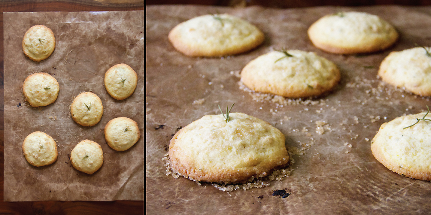 Italian Cookies with Orange, Rosemary and Polenta - SippitySup