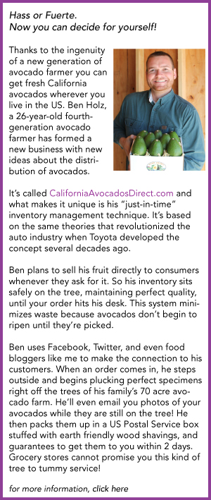 Ben Holz California Avocados Direct