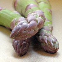 fresh asparagus