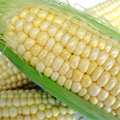SippitySup The Best of Sweet Summer Corn in a Soup with ...
