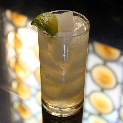SippitySup Vodka and Ginger Beer- A Mule is Born - SippitySup