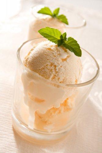 Highbrow/Lowbrow Apricot Zabaglione Ice Cream - SippitySup